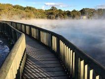Hot pools in Kuirau Park in Rotorua New Zealand Royalty Free Stock Image