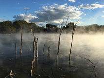Hot pools in Kuirau Park in Rotorua New Zealand Stock Photos