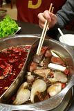 Hot pot. The hot pot the image shows originates in Sichuan China, it is extremely popular in China now, its characteristic is very spicy,but you can't resist its Royalty Free Stock Image