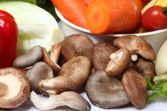 Hot pot ingredients. Vegetables Hot Pot ingredients mushroom royalty free stock photos