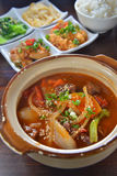 Hot pot stew beef Royalty Free Stock Photography