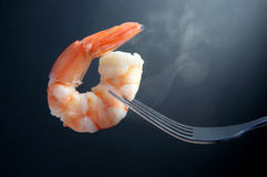 Hot prawn on a fork. Steaming hot shrimp on a fork closeup Royalty Free Stock Photos