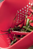 Hot preparation. Red and green chillies in red plastic strainer Royalty Free Stock Images