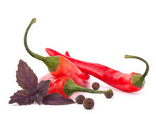 Hot red chili or chilli pepper and basil leaves still life Stock Photos