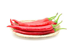 Hot red chili or chilli pepper isolated. Stock Images