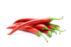 Hot red chili or chilli pepper isolated. Stock Photos