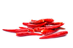 Hot red chili or chilli pepper Stock Photo