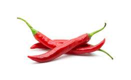 Hot red chili or chilli pepper isolated. Royalty Free Stock Photos