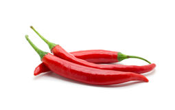 Hot red chili or chilli pepper isolated. Royalty Free Stock Image