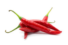 Hot red chili or chilli pepper isolated. Royalty Free Stock Images
