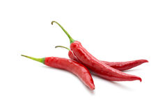 Hot red chili or chilli pepper isolated. Stock Photography