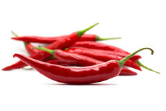 Hot red chili or chilli pepper isolated. Royalty Free Stock Photo