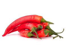 Hot red chili or chilli pepper Royalty Free Stock Photography