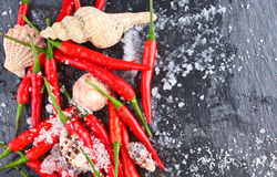 Hot Red Chili Pepper Stock Photo