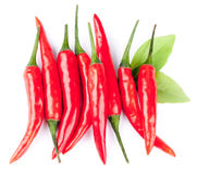Hot red chili peppers. Closeup of red, hot chili peppers on a white background Royalty Free Stock Image
