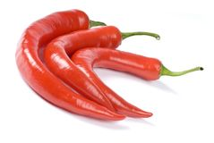 Hot Red Chili Peppers Isolated on White Royalty Free Stock Photo