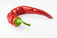 Hot red chili peppers. Hot red pepper on a white background Royalty Free Stock Image