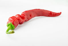 Hot red chili peppers. Hot red pepper on a white background Royalty Free Stock Photography