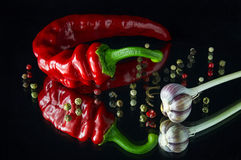 Hot red chili peppers. And spices on a dark background Royalty Free Stock Images