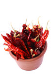 Hot Red Chilli Chillies pepper in teracotta pot Royalty Free Stock Photography