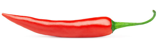 Hot red chilli pepper. Hot red chili or chilli pepper isolated on white background Royalty Free Stock Photography
