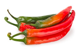 Hot red chilli pepper Royalty Free Stock Photo