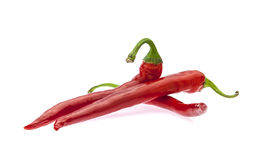 Hot red chilli peppers Royalty Free Stock Images