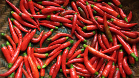 Hot red chillies Royalty Free Stock Photos