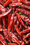 HOT RED DRIED CHILI PEPPERS Stock Photos