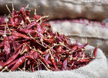 Hot red dried pepper bag Stock Photography
