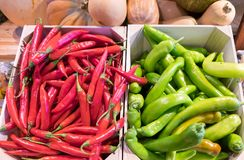 Hot red and green chili peppers at farmers market royalty free stock photography