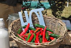 Hot red and green Chillies in Wicker Basket Royalty Free Stock Image