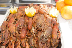 Hot red lobsters for culinary food with lemon and oranges. Restoran, barbecue, healthy food, squirrels Stock Photo