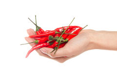 Hot red pepper Stock Photos