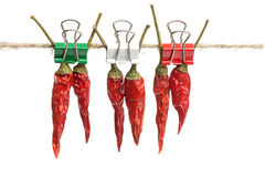 Hot Red Pepper - A Symbol Of Mexican Cuisine Royalty Free Stock Photos