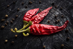 Hot red pepper and black pepper Royalty Free Stock Image