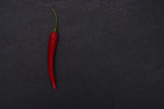Hot red pepper on black slate background Royalty Free Stock Photo