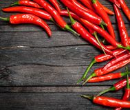 Hot red pepper. On black wooden background royalty free stock images