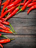 Hot red pepper. On black wooden background stock photos