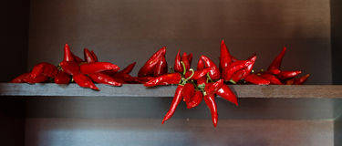 Hot red pepper sheaf Royalty Free Stock Image