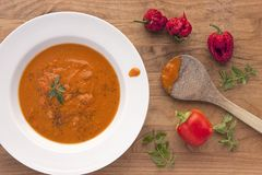Hot red pepper soup and ingredients. An over view of preparing hot red pepper soup and some ingredients stock images