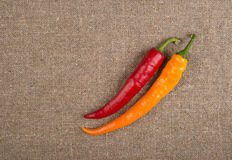 Hot red pepper Royalty Free Stock Photo