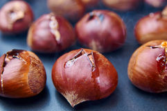 Hot roasted chestnuts Royalty Free Stock Photography