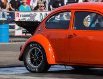Hot Rod Beetle Royalty Free Stock Images