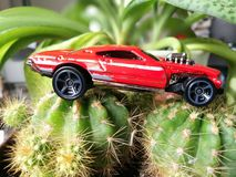 Hot rod car miniature model. Red hot rod car miniature model on cactus Stock Photo