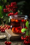 Hot rowanberry tea in glass cup,. Rustic background Royalty Free Stock Photos