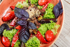 Hot salad with grilled tomatoes, eggplant, zucchini, red pepper, salad leaves, garnished with grated walnuts and basil Royalty Free Stock Photos