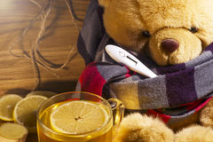 Teddy has a cold.  Stock Photo