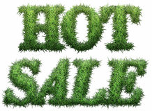Hot Sale text made of grass. Isolated on a black background. 3D rendering Royalty Free Illustration