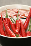 Hot salsa mexicana Stock Images